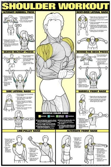 average man can bench press woman picture 7