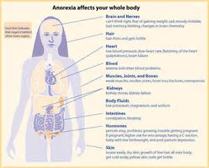 anorexic weight loss rate picture 17