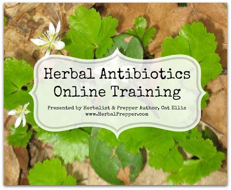 online herbal training picture 3