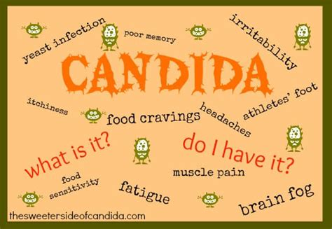 fenugreek can it rid body of systemic candida picture 9