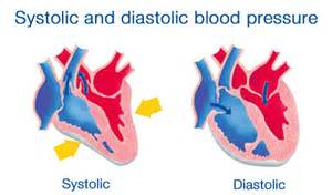 Systolic and diastolic pluse numbers in blood pressure picture 3