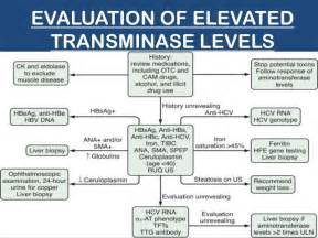severely elevated liver enzymes picture 3