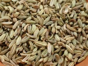 fennel seed picture 11