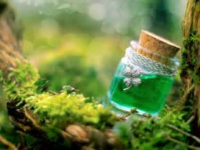 herbal poisons picture 7