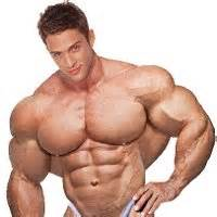morphed male bodybuilders picture 11