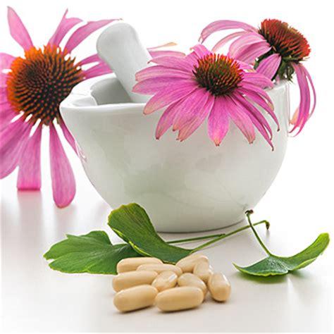 common + cold + echinacea picture 5