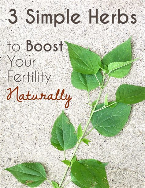 natural virtilty herbs for muslim women picture 7