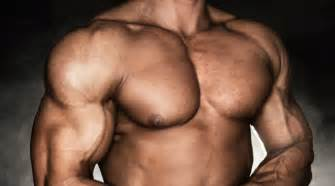 chest muscle at picture 13