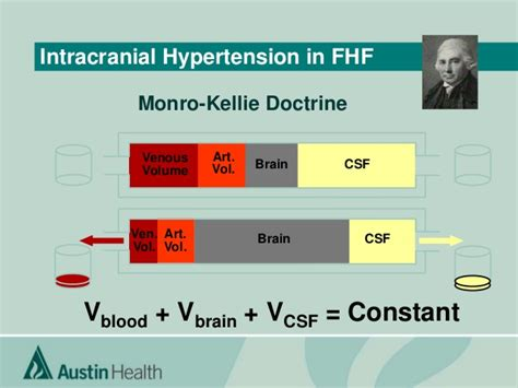 cerebral blood flow autoregulation picture 15