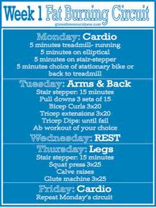 fat burning workout for dummies picture 14