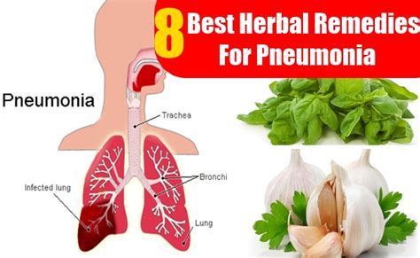 herbal remedies for lung constriction picture 5