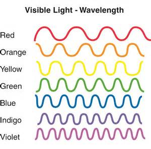 wavelength for patholase pin pointe laser picture 11