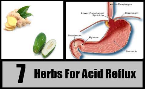 herbal teas acid reflux picture 10
