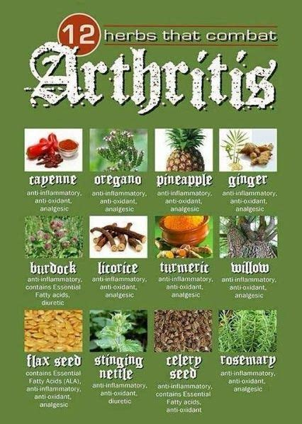 Herbal treatments of arthritis picture 1