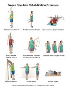 exercises for joint therapy picture 11