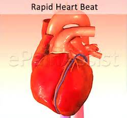 fast heart beat and dietrine picture 1