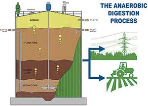 anaerobic digestion system picture 11