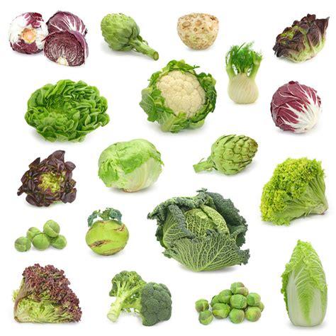 cruciferous vegetables testosterone levels picture 13