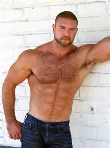 bears men muscle chest hairy picture 1