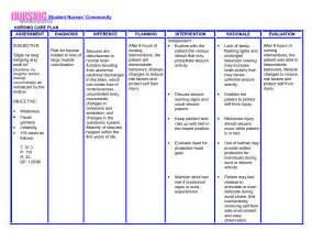 skin integrity nursing care plan examples picture 10