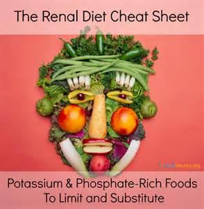 renal failure nutrition diet 2014 picture 1