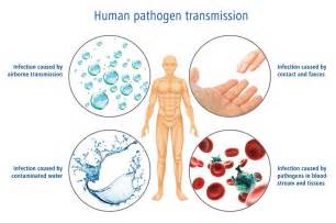 airborne skin virus picture 13