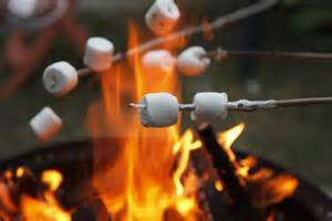 can marshmallows be toasted on the real flame picture 11