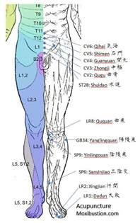 reflexology overactive bladder picture 2