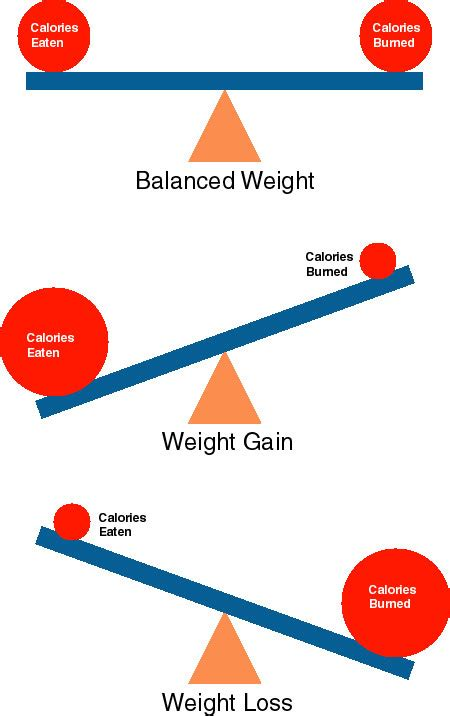 weight loss calories picture 5
