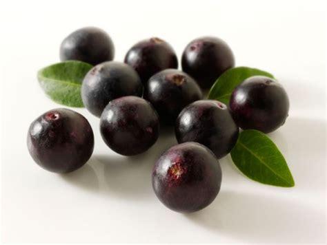 does acai berries raise estrogen picture 18