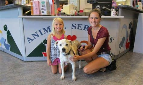 joint animal services picture 3