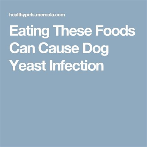 cause yeast infection picture 9