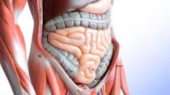 stomach virus symptoms 2014 march april picture 13