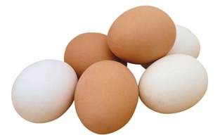 Cholesterol in fertilized eggs picture 2