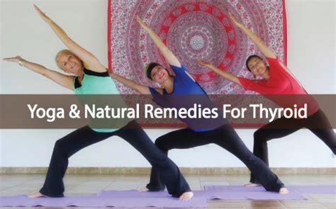 yogi what herbal medicine picture 5
