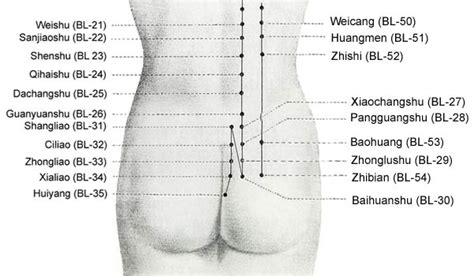 acupressure points pelvic pain picture 6