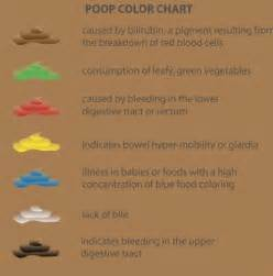 what does light color bowel movements mean picture 2