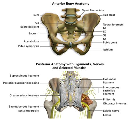sacroiliac joint back injury settlement amounts picture 5