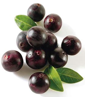acai extract picture 9