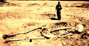 linty nephilim lamedh picture 11
