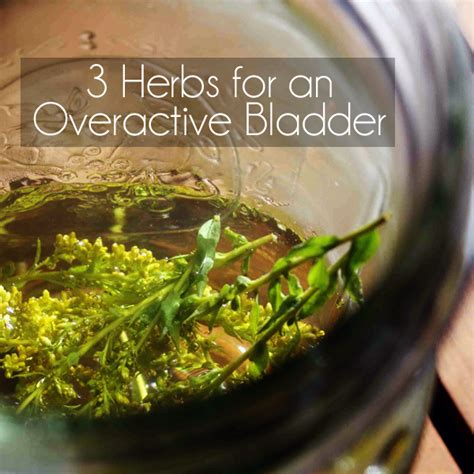 herbal teasfor overactive bladder picture 1
