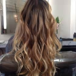 dark hair with blonde highlights picture 5