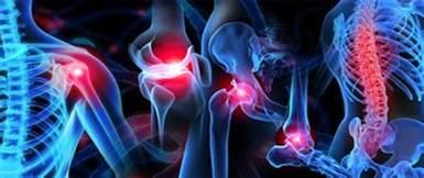 orthopedic sleep system lenox picture 11