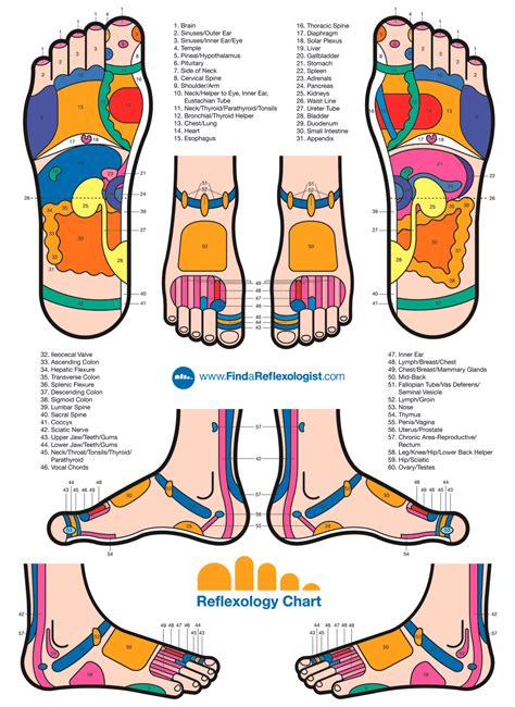 foot reflexology for sexual enhancement for men picture 8
