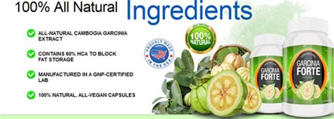 where can buy garcinia forte picture 7