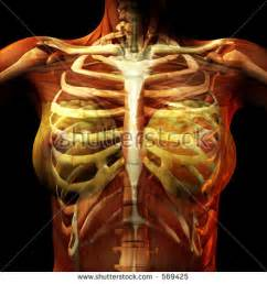 woman body scissor man ribs picture 5