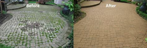 stop weeds growing between pavers picture 5