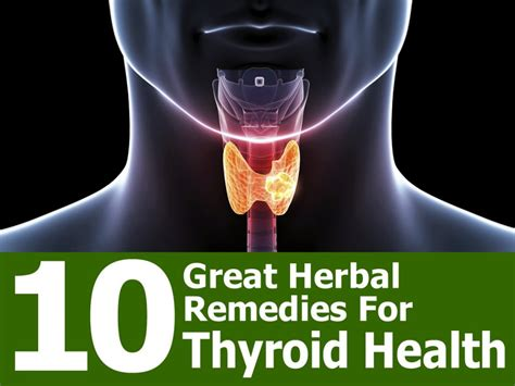 herbal remedy for thyroid picture 2