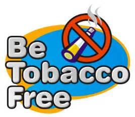 bad habits smoke shop picture 13