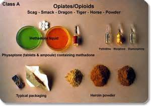 all natural opioids drugs picture 5